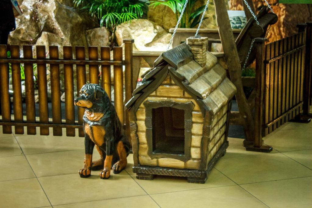 Собачья будка 6