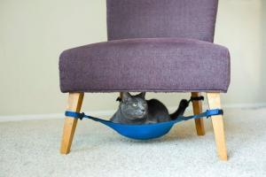 Кошачьи гамаки