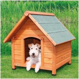 Собачья будка: формы и материалы