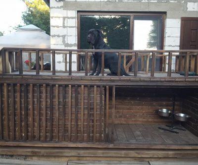 будка для 2-х собак